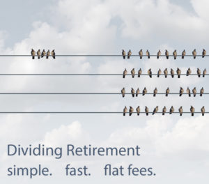 Divided Birds on Wire with text: Dividing Retirement, simple, fast, flat fee